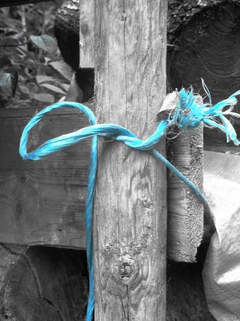 Blue rope 026 pop colour small